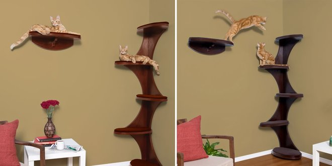 10 Best Cat Trees June 2020 Reviews